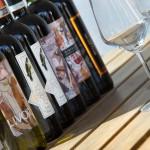 Bricco del Cucù – I vini in degustazione