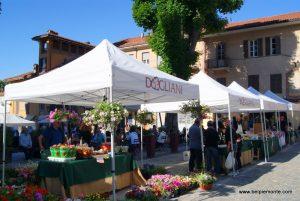 Casa Vacanze Fusina (Dogliani) – Antica Fiera della Ciliegia