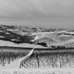 Casa Vacanze Fusina (Dogliani) – Langhe inverno