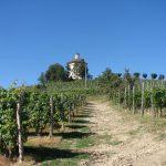 Casa Vacanze Fusina  – (Dogliani) – Cappella di San Fereolo in estate