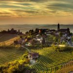 Andar per vigne e cantine