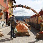 Casa Vacanze Fusina (Dogliani) zucche giganti a Piozzo