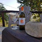 Casa Vacanze Fusina (Dogliani ) – Cantinea Cardelli Albaretto Torre