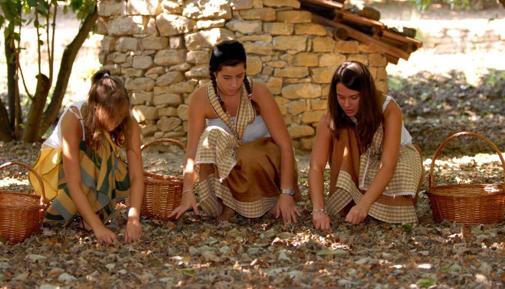 Casa Vacanze Fusina (Dolgiani) - Sagra della Nocciola di Cortemilia