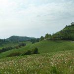 Casa Vacanze Fusina (Dogliani) – Alta Langa