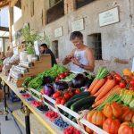Casa Vacanze Fusina (Dogliani) – Open Garden Baladin: mercato