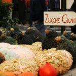 Casa Vacanze Fusina (Dogliani) – Fiera della Zucca di Piozzo