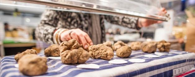 Offerta per le Fiere del Tartufo in Piemonte 2017